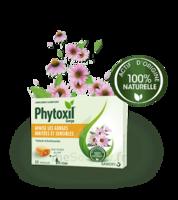 Phytoxil Pastilles Gorge Pastilles Adulte Enfant +12 Ans B/20 à Libourne