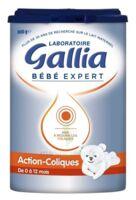 Gallia Bebe Expert Ac Transit 1 Lait En Poudre B/800g à Libourne