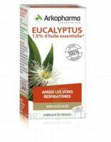 Arkogélules Eucalyptus Gélules Fl/45 à Libourne