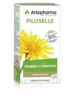 Arkogélules Piloselle Gélules Fl/45 à Libourne