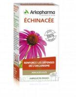 Arkogélules Echinacée Gélules B/45 à Libourne