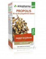 Arkogélules Propolis Bio Gélules Fl/45 à Libourne