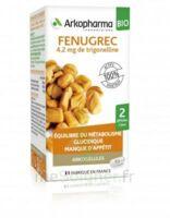Arkogélules Fenugrec Bio Gélules Fl/40 à Libourne