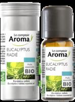 Huile Essentielle Bio Eucalyptus Radié à Libourne
