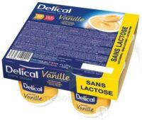 Delical Creme Dessert Hp Hc Sans Lactose, Pot 200 G X 4