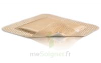 Mepilex Border Pansement hydrocellulaire stérile 17,5x17,5cm B/10 à Libourne