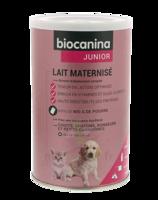 Biocanina Lait poudre maternisé B/400g à Libourne