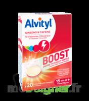 Alvityl Boost Comprimés B/20 à Libourne