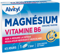 Govital Magnésium Vitamine B6 Comprimés B/45 à Libourne