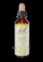 Fleurs De Bach® Original Olive - 20 Ml à Libourne