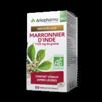 Arkogélules Marronnier D'inde Bio Gélules Fl/45 à Libourne