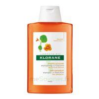 Klorane Capucine Shampooing 200ml à Libourne